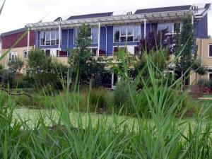 basta-habitat1